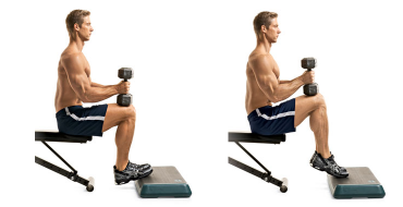 seated-calf-raise_sm